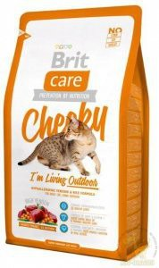 Brit Care Cat Cheeky Outdoor dziczyzna i ryż 2kg