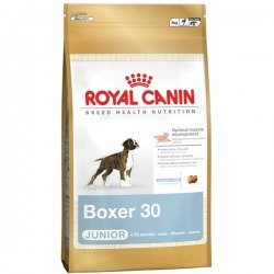 Royal Canin Boxer Junior dwupak 2x12kg
