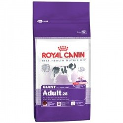 Royal Canin Giant Adult dwupak 2x15kg