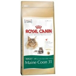 Royal Canin Maine Coon 31 dwupak 2x10kg